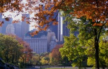 Central Park in Autumn - New York City