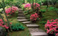 Japanese garden wallpaper - Japan