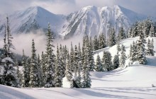 Winter Wonderland - British Columbia - Canada
