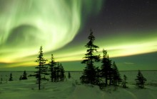 The Northern Lights in Winter - Churchill - Manitoba - Canada