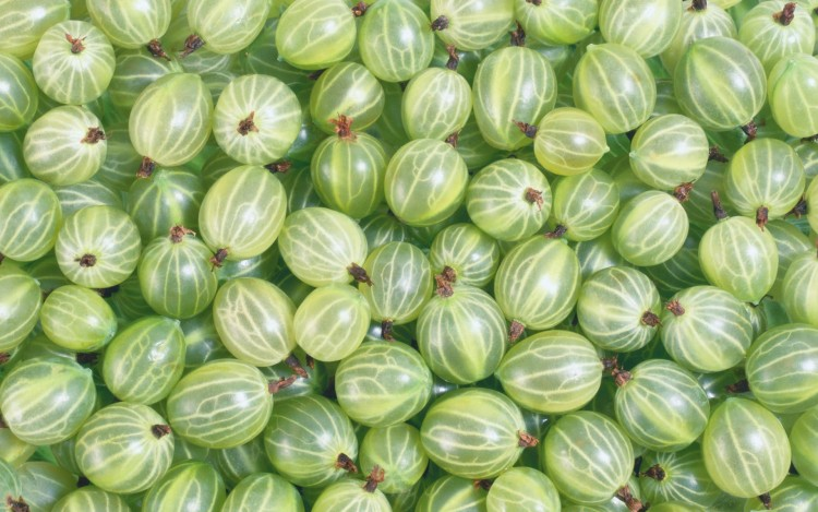 Gooseberry HD, Food wallpapers