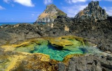 Tide Pool - Fernando de Noronha National Marine Sanctuary - Brazil