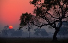 Transpantaneira at Sunrise - Pantanal - Brazil