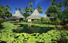 Lily Pads and Thatched Huts - French Polynesia