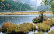 Small Arber Lake - Bavarian Forest - Germany