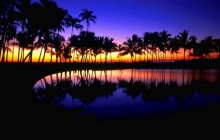 Tropical Reflections - Hawaii - Hawaii