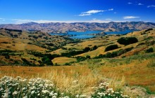 Christchurch Countryside - Canterbury - New Zealand