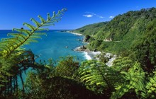 Paparoa National Park - South Island - New Zealand