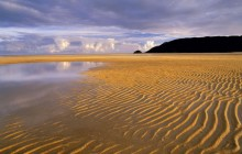 Low Tide - Abel Tasman National Park - New Zealand