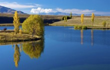 MacKenzie Basin - South Island - New Zealand