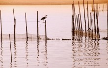 La Albufera National Park - Spain