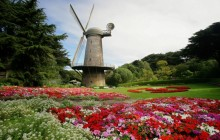 North Dutch Windmill and Queen Wilhelmina Tulip Gardens - San Francisco