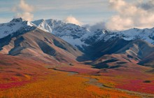 Dry Creek Running Through Denali National Park - Alaska