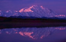 Early Morning Light in Denali - Alaska