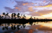 Everglades National Park at Sunset - Florida