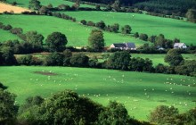 Fields and Farmhouses of County Cork - Ireland