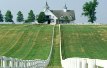 Manchester Farm - Lexington - Kentucky