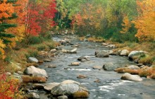 Autumn Colors - White Mountains - New Hampshire