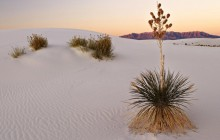 White Sands at Sunrise - New Mexico