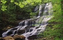 Pearson's Falls - Owned by the Tryon Garden Club - North Carolina