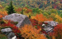 Rocky Outcropping in Autumn -  Blue Ridge Parkway - North Carolina