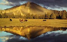 Mountain Reflection - Near Smith Rock Park - Oregon