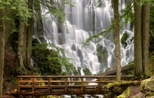 Ramona Falls - Mount Hood Wilderness HD wallpaper - Oregon