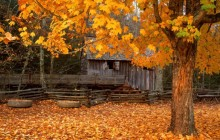 John Cable Mill - Cades Cove - Great Smoky Mountains - Tennessee