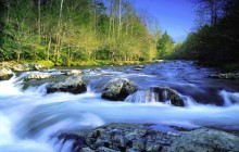 Little Pigeon River - Great Smoky Mountains - Tennessee