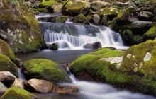 Roaring Fork River and Moss Covered Rocks - Tennessee