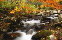 Laurel Creek in Autumn - Great Smoky Mountains - Tennessee