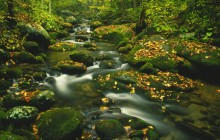 Roaring Fork - Timed Exposure - Great Smoky Mountains - Tennessee
