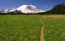 Scenic Trail - Mount Rainier National Park - Washington