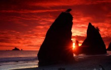 Sea Stacks Knife a Blood-Red Sky - Olympic Park - Washington