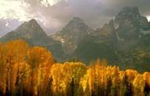 Fall in the Tetons - Wyoming