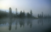 Morning Fog Over Yellowstone River - Wyoming