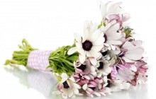 Bridal bouquet wallpaper - Bouquets