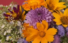 Best flower bouquet - Bouquets