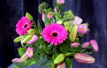 Fresh flowers bouquet - Bouquets