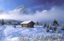 Winter scenes wallpaper - Winter